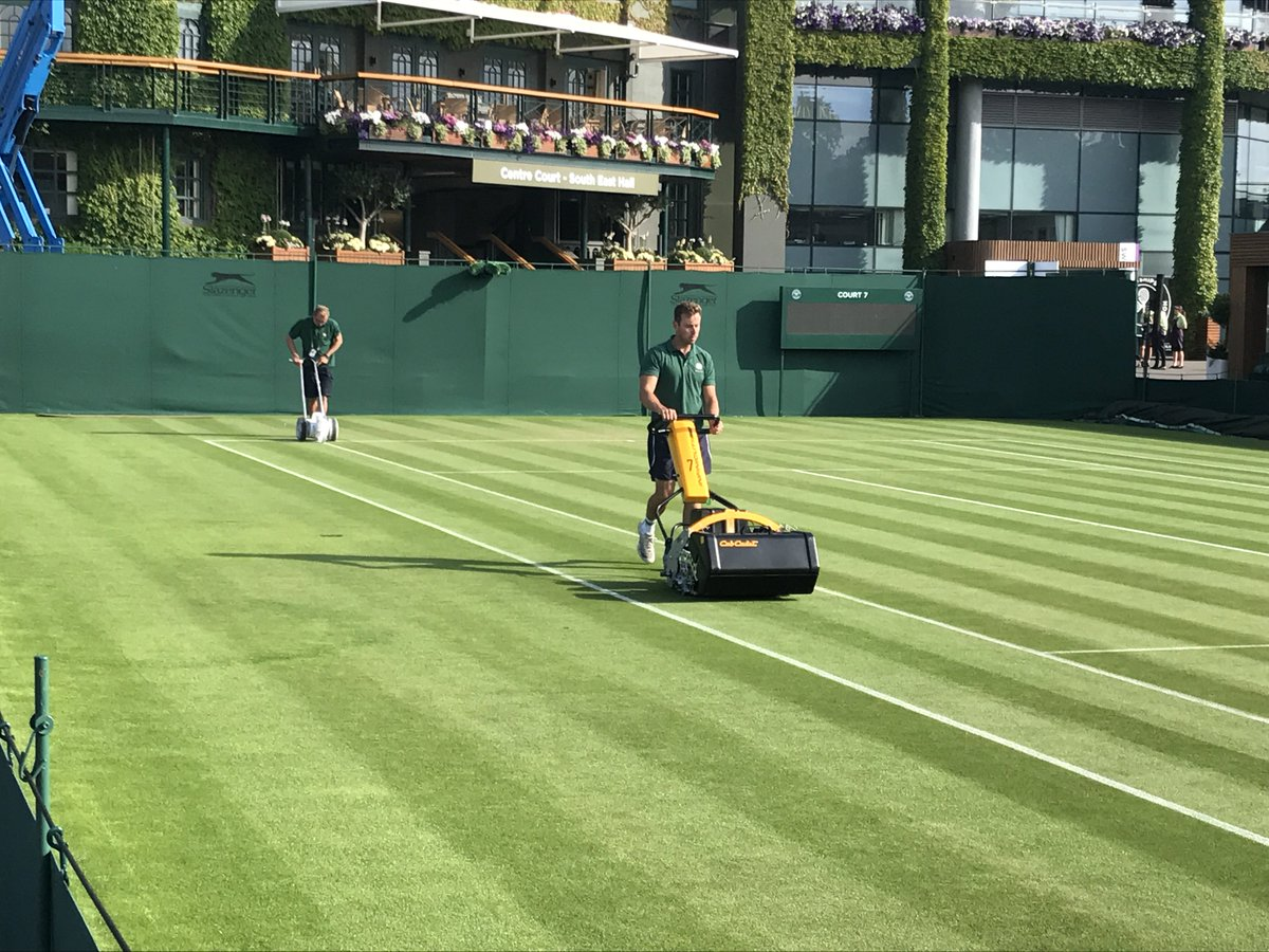 Image result for wimbledon mower