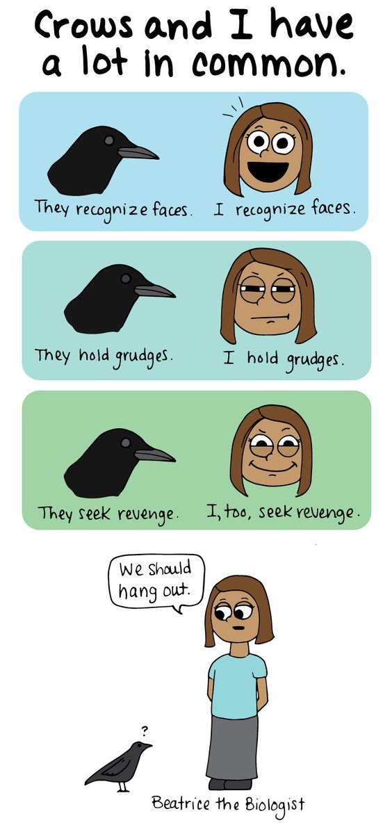 Do you identify with crows too? Is this just me? https://t.co/UPf4BFjCYL
