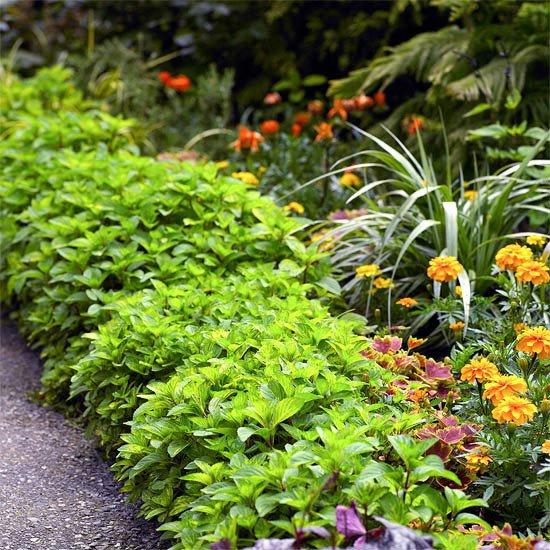 21 Easy Ideas to Beautify Your #Yard via @BHG  http:// bit.ly/2slKIZt  &nbsp;   <br>http://pic.twitter.com/Jnipkqb9W6 #realtor