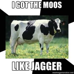 Cow Puns Punpedia