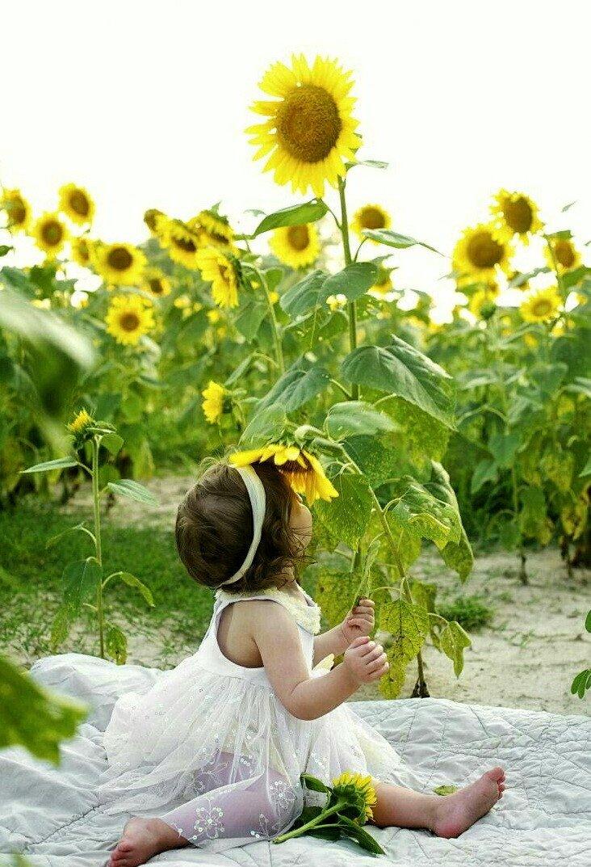 Ах лето картинки детские