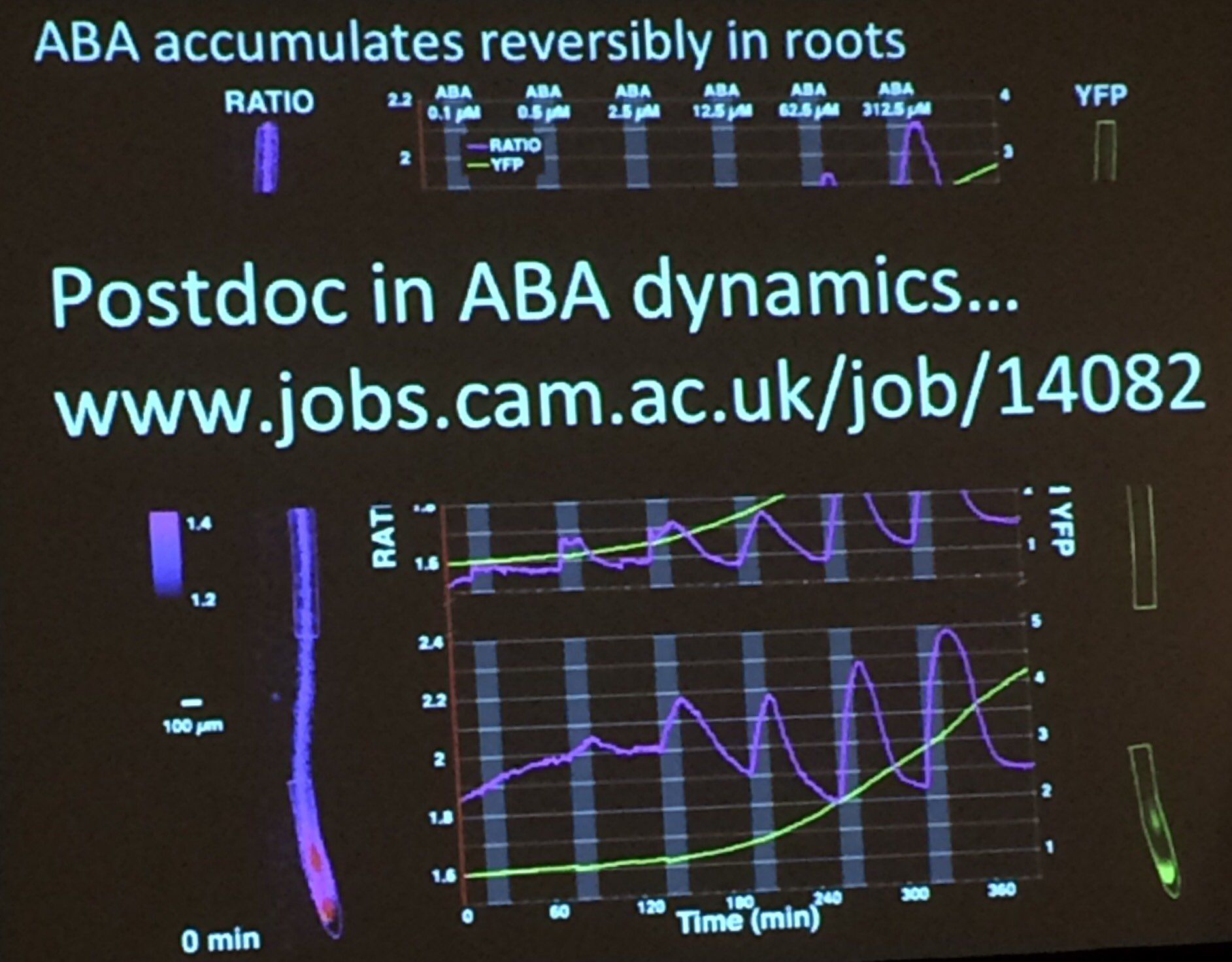 Interested in doing a postdoc with @xanderjones82 on ABA @slcuplants - check this: https://t.co/yRpxTmyC5z #ICAR2017 https://t.co/DClQ91VpxO