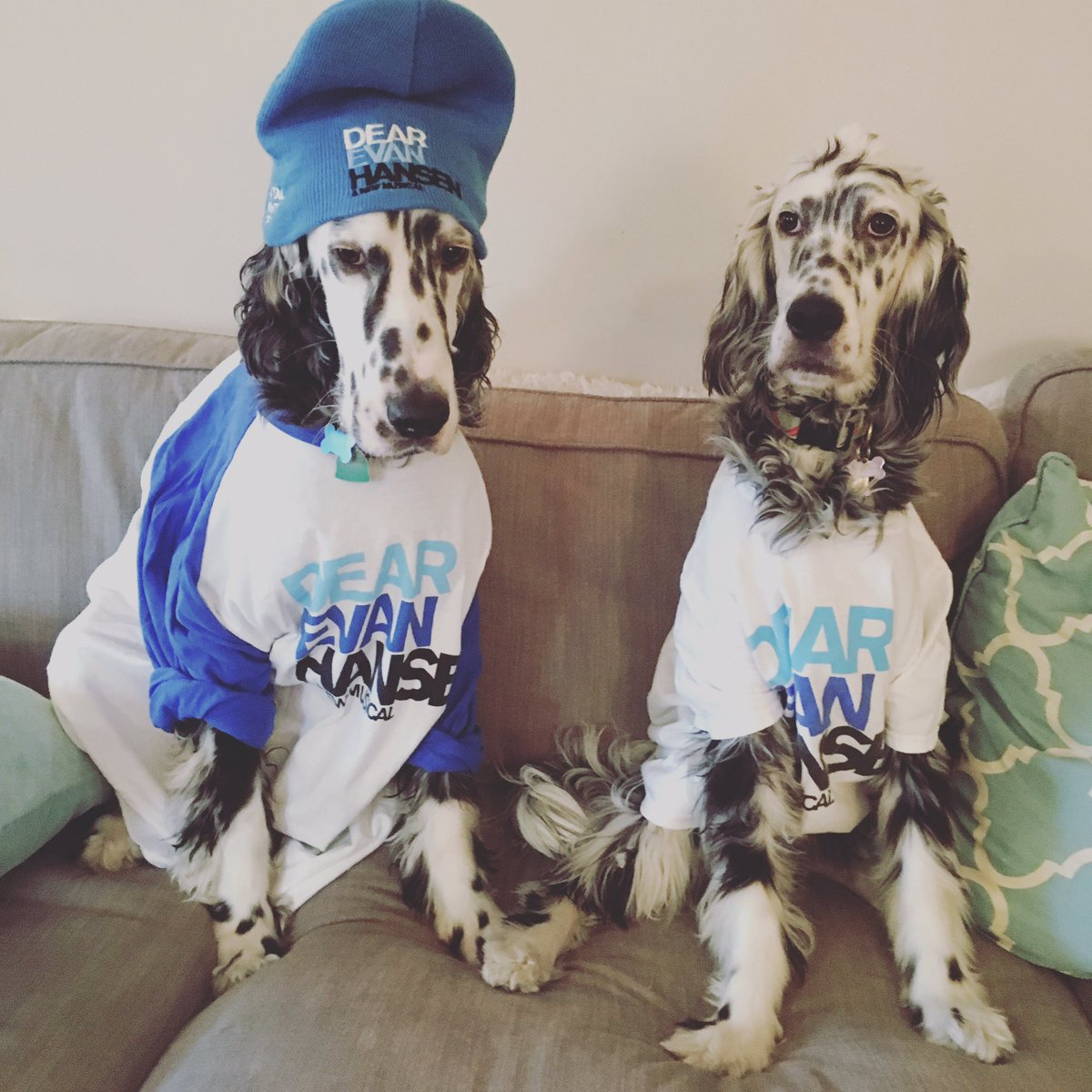 It's #TakeYourDogToWorkDay and Pigeon and Vixen are READY. What do you...