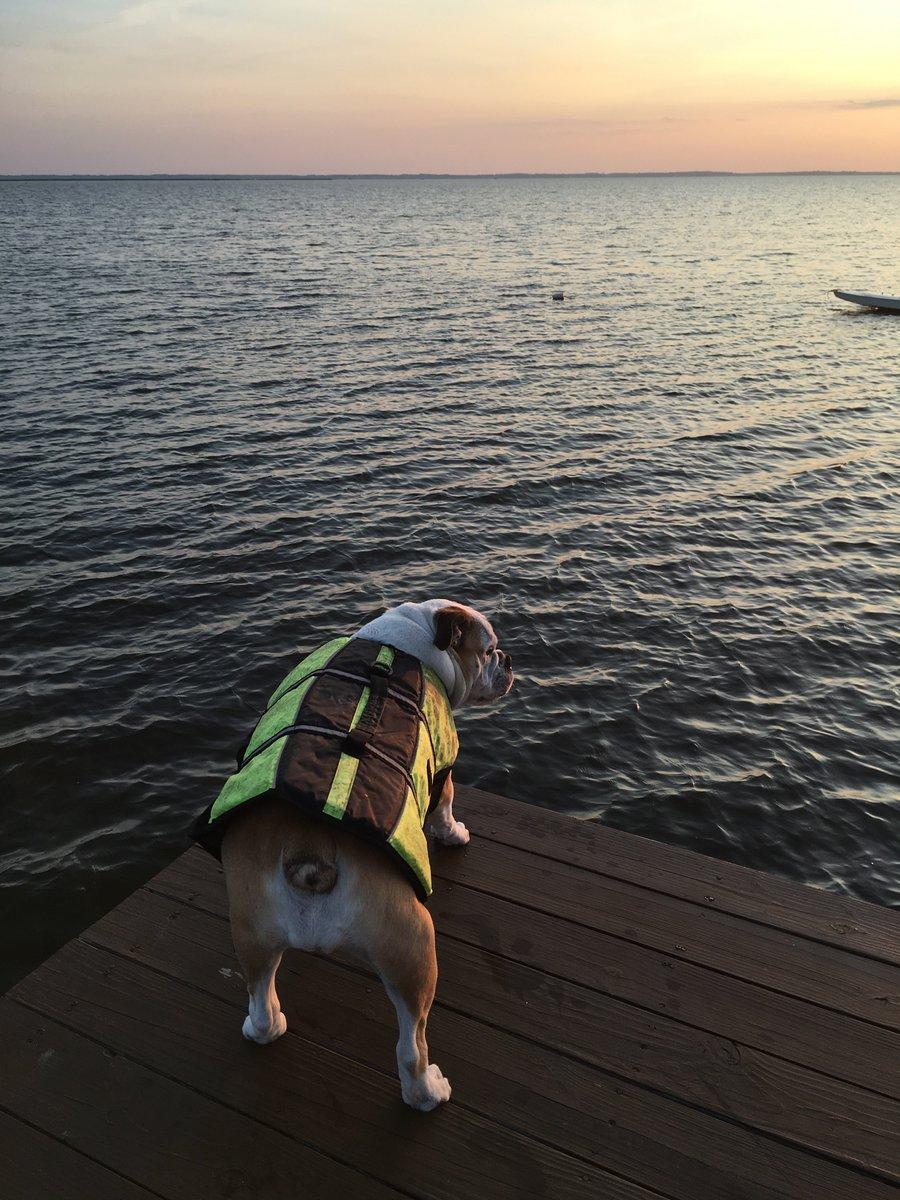 Thinking of #OBX sunsets. #FlashbackFriday https://t.co/d0zKAm8fnT