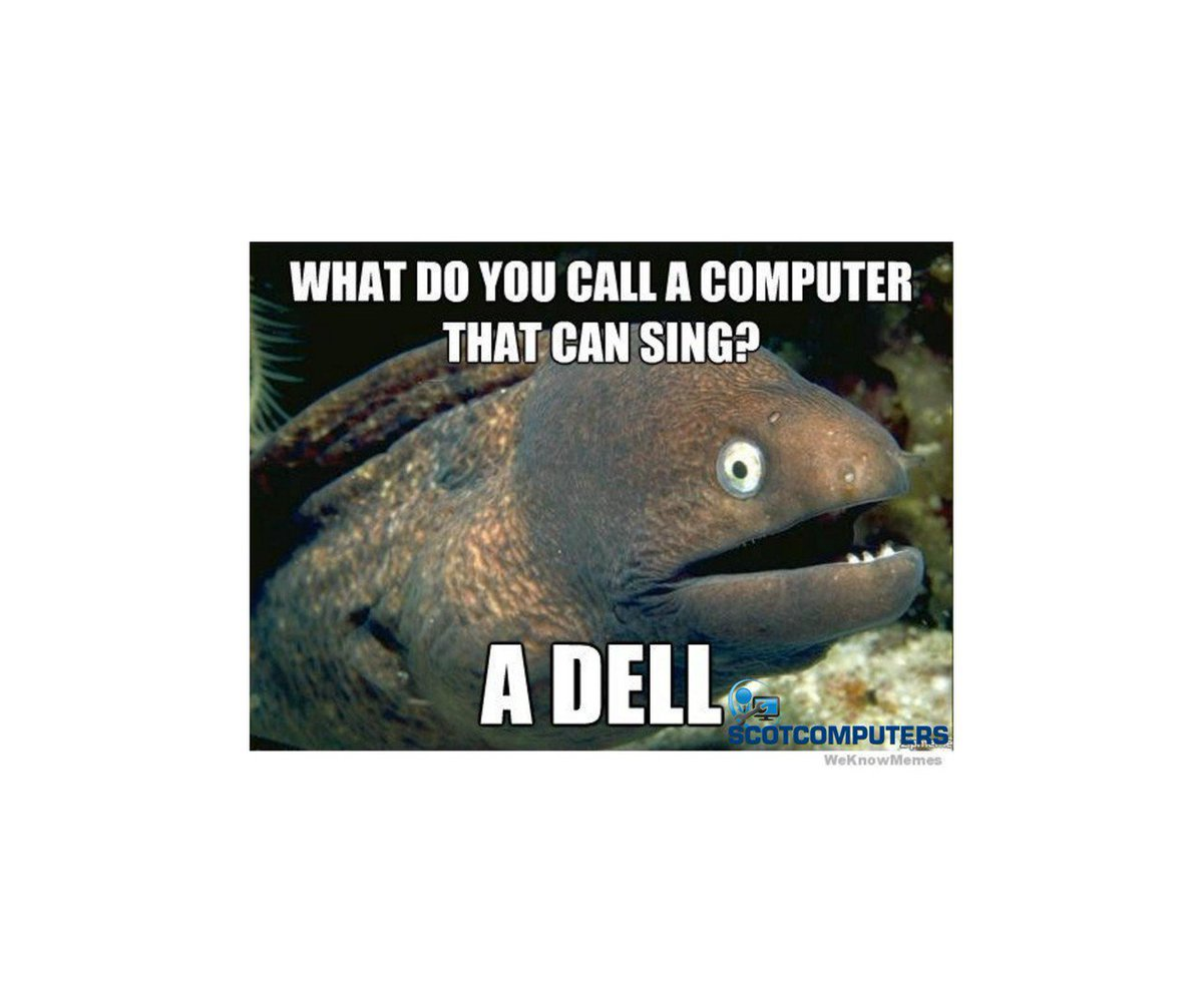 We've got the #fridayfeeling here at Scot Computers! #badjokes #friday...