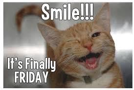 Good Morning!  #friday #FF #cats #instagood #F4F #L4L #retweet #repost #likeandshare #tgif #smile #goldenisles  http:// ow.ly/Vwtb30cPH9w  &nbsp;  <br>http://pic.twitter.com/Zg3bXjb4fD
