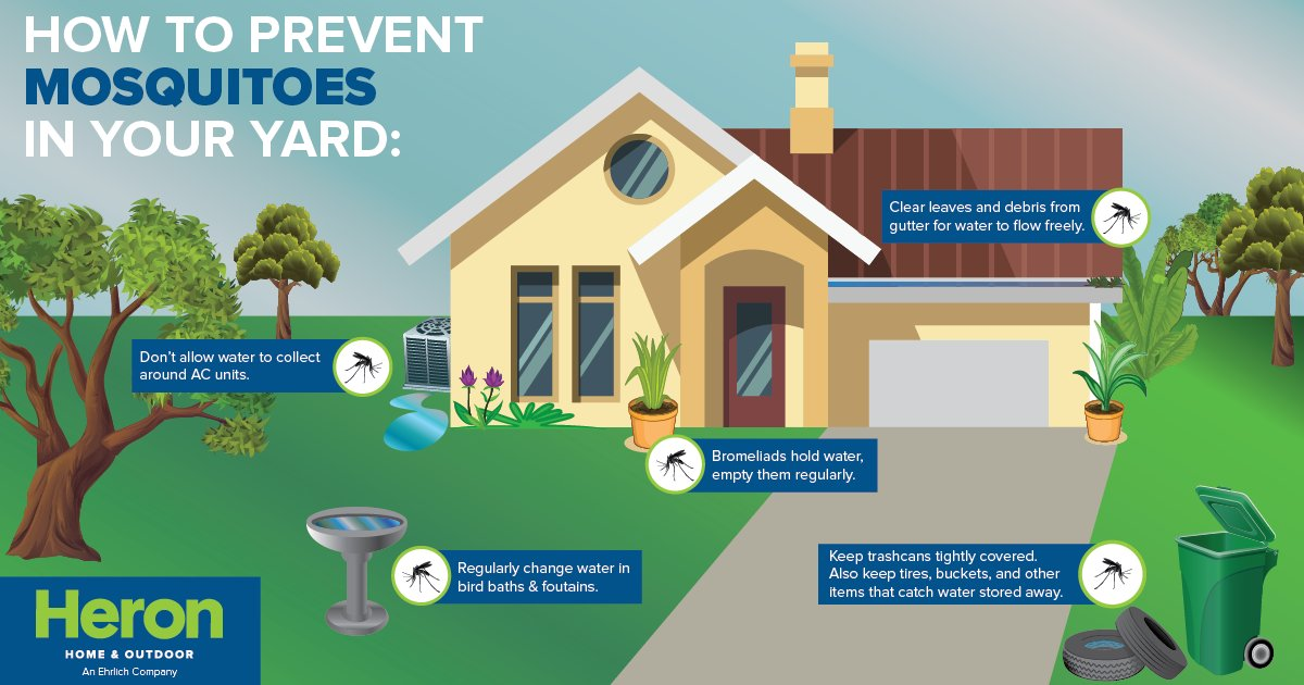 Heron Home Outdoor On Twitter Mosquitoes Lay Eggs In Standing Water They Carry Viruses Like Zika More Use This Guide To Prevent Them Ask About
