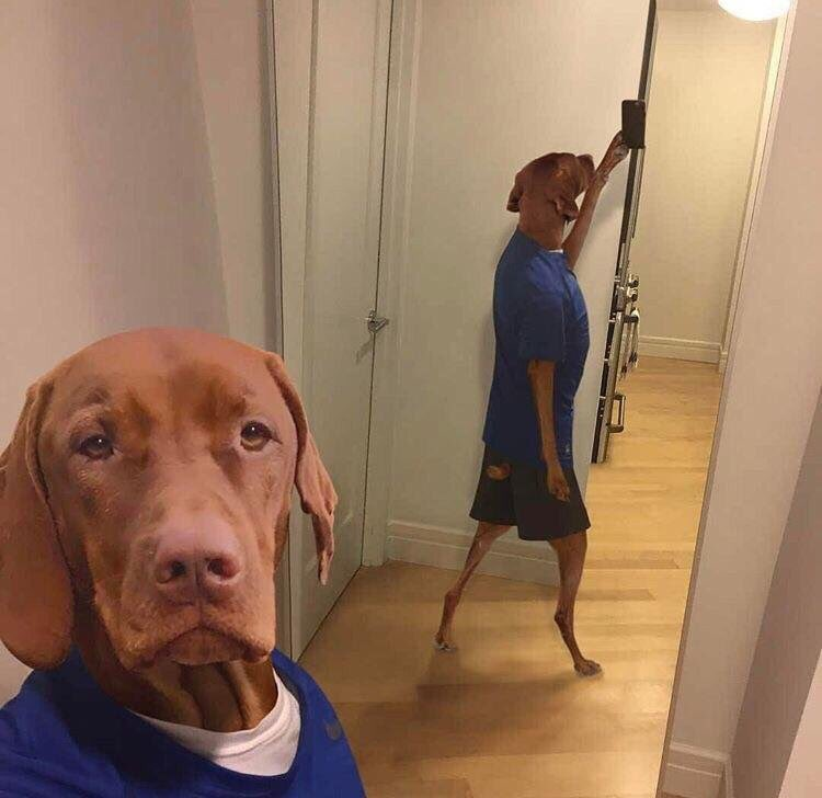 Felt cute in this pic might delete soon tho https://t.co/lLjbWp4s4N