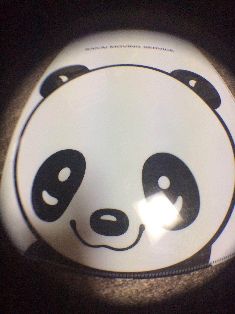 test ツイッターメディア - こちらは 魚眼レンズ これも確かに違いはあるけれど、なにを撮るといいのかしら? まずは、うちのねこを 撮ってみた #キャンドゥ #魚眼レンズ https://t.co/GWY3yS2xIk