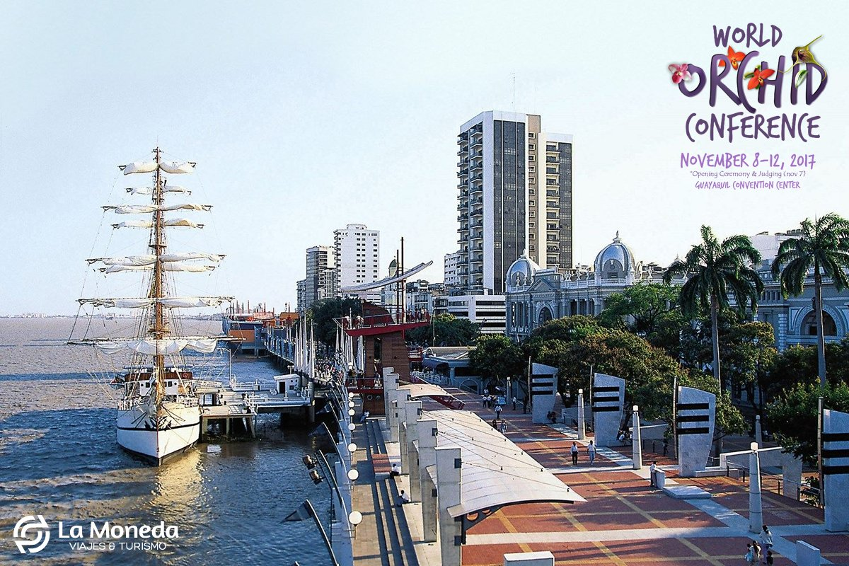 World Orchid Conference (City Tour) #Guayaquil, Madera de Guerrero I. Learn more:  http:// ow.ly/kpwz30cQhtH  &nbsp;   *Reserve before September 30, 2017<br>http://pic.twitter.com/dIx6XwWHJL