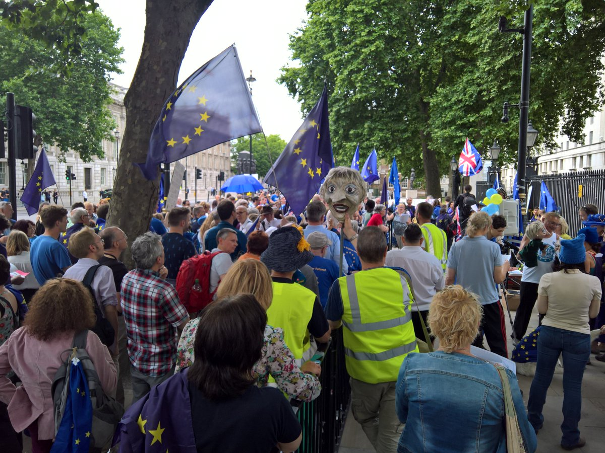 Hundreds of people outside downing street. Not a leaver in sight. #Bre...