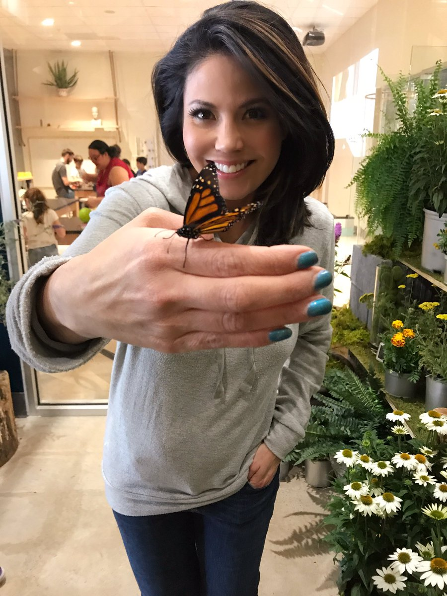 LIVE butterflies, real tools to tinker, party pavilions and an open field to run &amp; explore! Taking you inside @BadlandsPlay at 5PM #NBC4DC <br>http://pic.twitter.com/LuNFu2g6l7