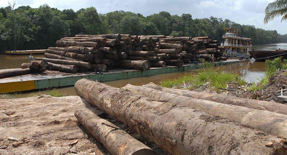 Noruega diz que, se #desmatamento na Amazônia cair, repassará mais recursos ao Brasil https://t.co/ZygvED9BS8