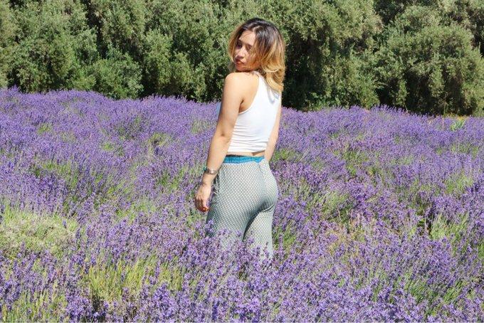 Oh, Pretty Lavender