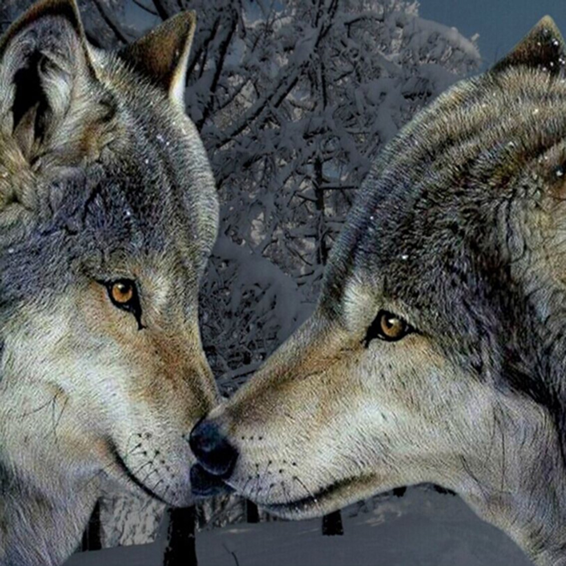 Love is at the end All... #ProtectWolves #Wolves  #YellowstoneWolves #StandForWolves  #Keepwolveslisted #Yellowstone #Wolfpack #ESA  #Wolfie<br>http://pic.twitter.com/29KLiFrJr6