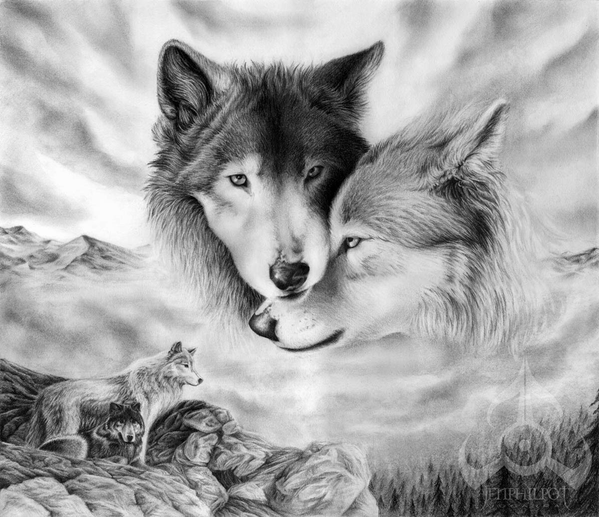 Loving you because it is today This is what really counts #ProtectWolves #Wolves  #YellowstoneWolves #StandForWolves  #Keepwolveslisted #ESA<br>http://pic.twitter.com/PcLOwXia6v