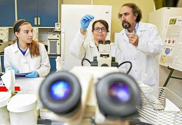 #Connecticut Agricultural Experiment Station in #NewHaven testing record number of #ticks https://t.co/M5ijmyg7qJ