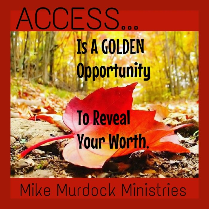#ACCESS... IS A GOLDEN OPPORTUNITY TO REVEAL YOUR WORTH.  @drmikemurdock<br>http://pic.twitter.com/pzZmyXmsq3