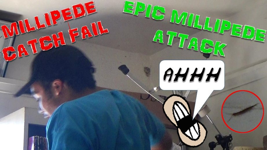 https:// youtu.be/woTdyYhy8Ng  &nbsp;  . MILLIPEDE CATCH FAIL #YouTube #youtuber #YouTubers #youtubers #EpicFail #Epic #bug #bugs #insects #insect #FAIL<br>http://pic.twitter.com/MqGdDvMXg5