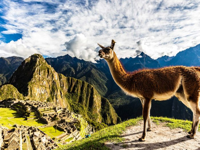 Flights to Peru are on sale starting at $375 round-trip right now so BRB, packing our best exploring shoes https://t.co/46hOQT7gdJ
