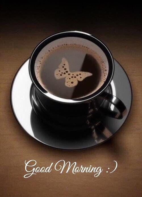Good morning  my beautiful followers or friends   Keep on following me and I will follow back  #MzanziFolloTrain  #MzansiFolloTrain <br>http://pic.twitter.com/PCZyQF7sp4