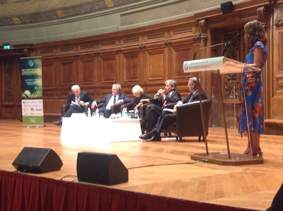 &#39;Problem : who is going to be in charge of what for governance ?&#39; #AccordDeParis #PactEnvironment<br>http://pic.twitter.com/VbV1hzURiT