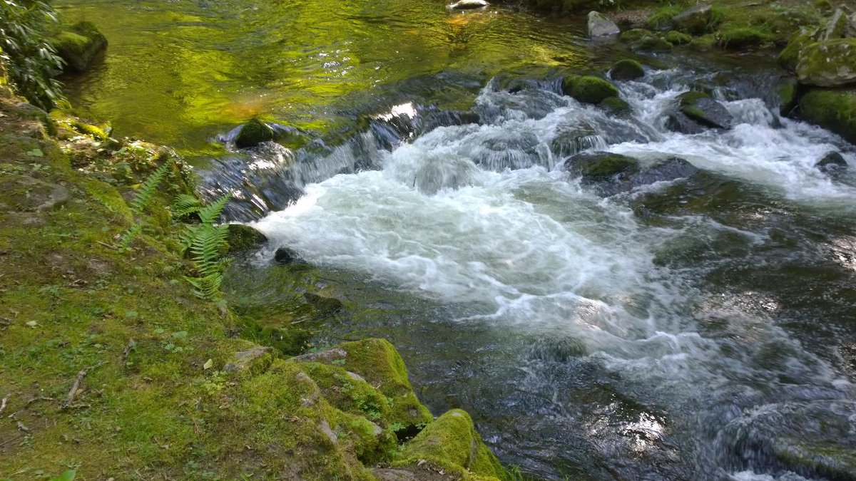 we have to #protect the #rivers of our #planet - #water #resources #future #livable #living #health #healthy #picoftheday #river<br>http://pic.twitter.com/5SDLTjbBvk