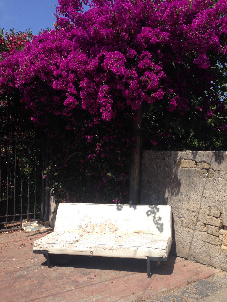 Sofa et bougainvillier #insolite #Procida<br>http://pic.twitter.com/7zPOAPdCWg