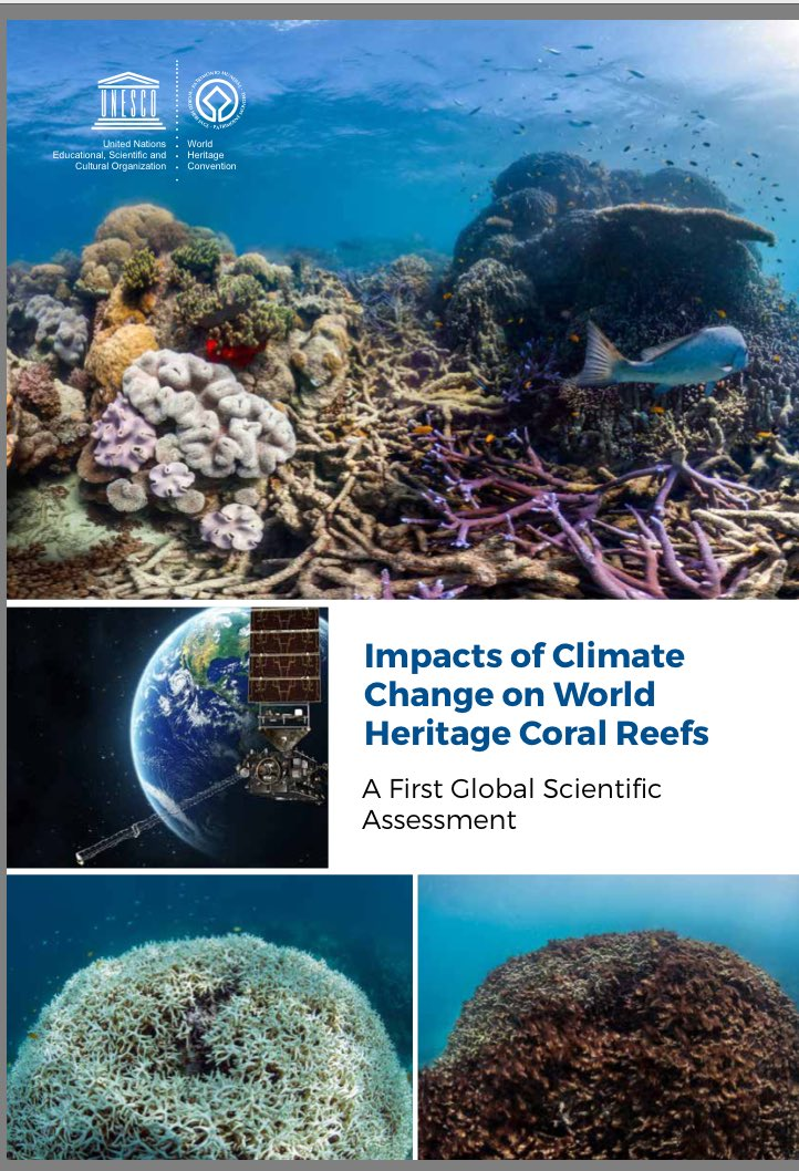 World Heritage #coralreefs likely to disappear by 2100 unless #CO2 emissions drastically reduce:   http:// ow.ly/fAk830cRpJE  &nbsp;   #ClimateChange <br>http://pic.twitter.com/HaBzcSNXpn