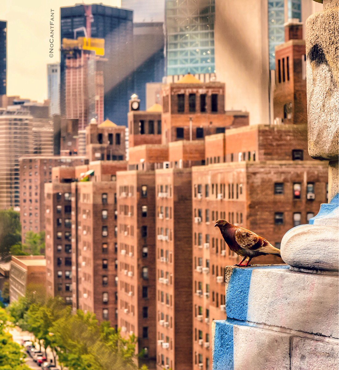 *Watch Me Fly*Create Your World! #Nomad #Freebird #wanderlust #youtuber #birdview #NewYorkCity #NewYork #NoCantFant #Something4thepeople <br>http://pic.twitter.com/zRfToLKoXq