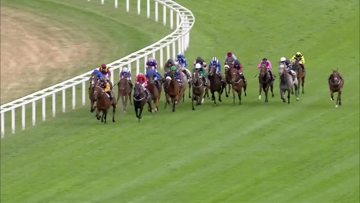 The Tin Man has won the group one Diamond Jubilee Stakes! Watch LIVE n...