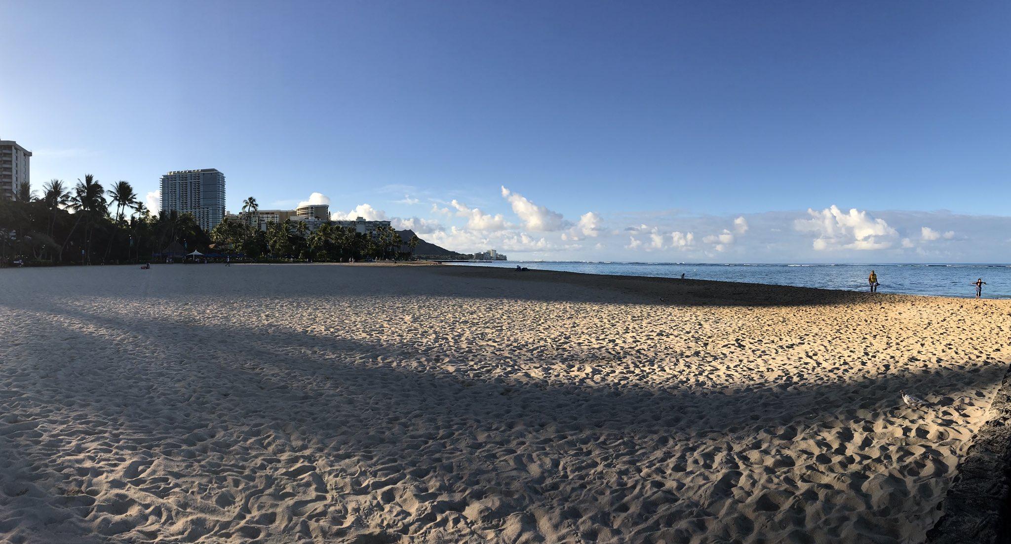 Good morning from Hawaii 🌴🌴🌴😁😁😁☀️☀️☀️ #plantbio17. @ASPB https://t.co/PV53nMERDw