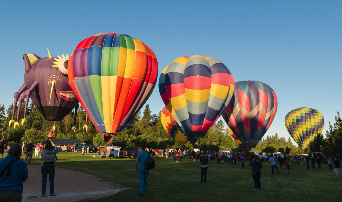 More balloons! @TigardBalloon Festival in @TigardOR #pdx #or #pdxnow #balloons<br>http://pic.twitter.com/wshbQaxq9a