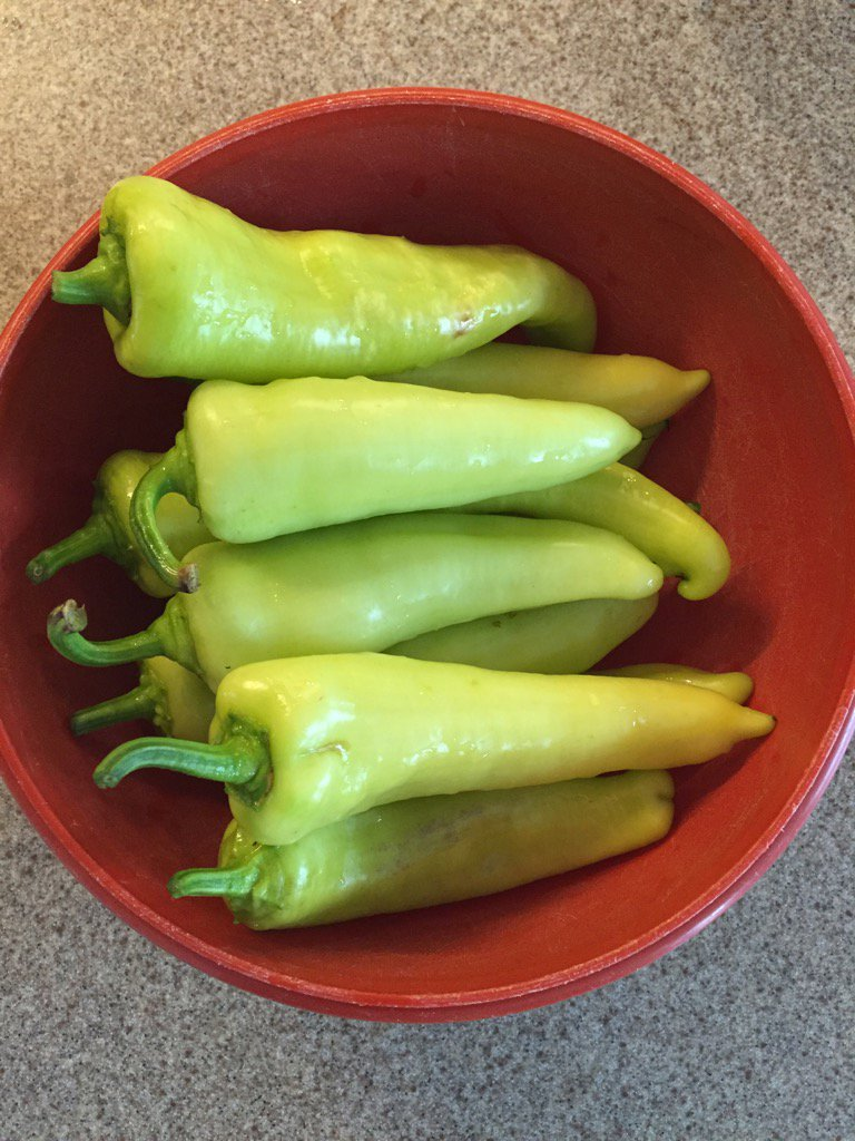 First crop of sweet banana peppers from the garden. Delicious! #garden...