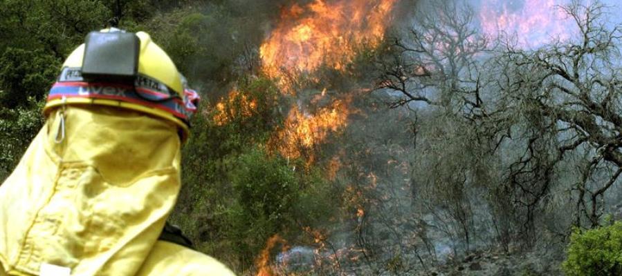 #ÚLTIMAHORA   El incendio de Moguer entra en el Espacio Natural de Doñ...