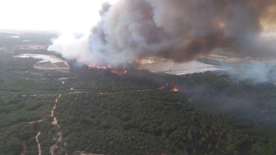 Las imágenes del incendio de Moguer son...