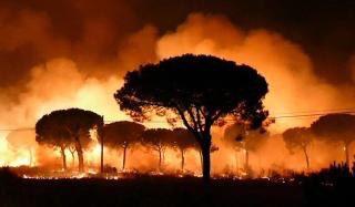Tristeza inmensa al ver arder #Doñana https://t.co/u9ScNEAaBB