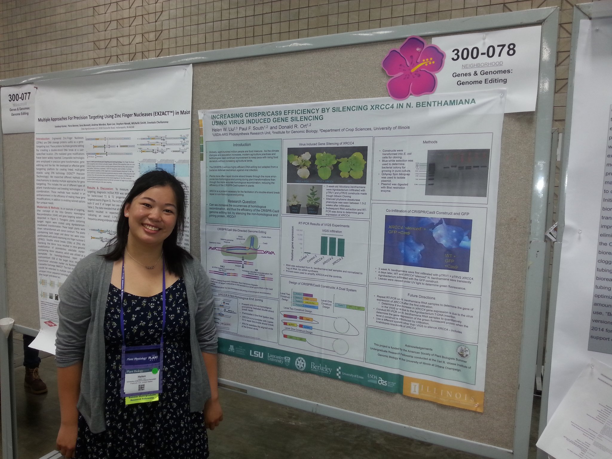 SURF undergrad poster session @melonhelen2 @RIPEresearch #plantbio17 https://t.co/7TDI2e1NS5