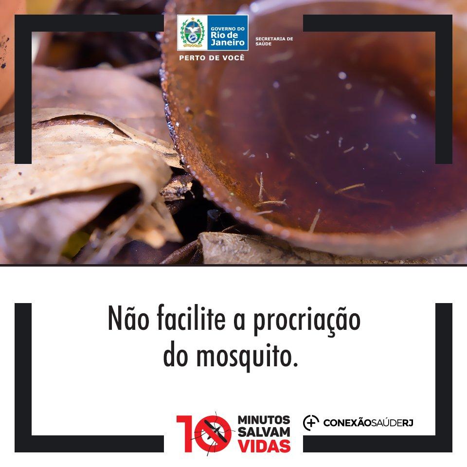 Somente se cada um fizer a sua parte poderemos vencer a batalha contra o Aedes. Não custa nada e ainda vai ajudar a salvar vidas. https://t.co/I7XfyditRM