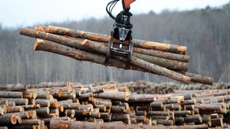 Canadian softwood producers brace for 2nd wave of U.S. lumber duties https://t.co/7uzY2r1Yql