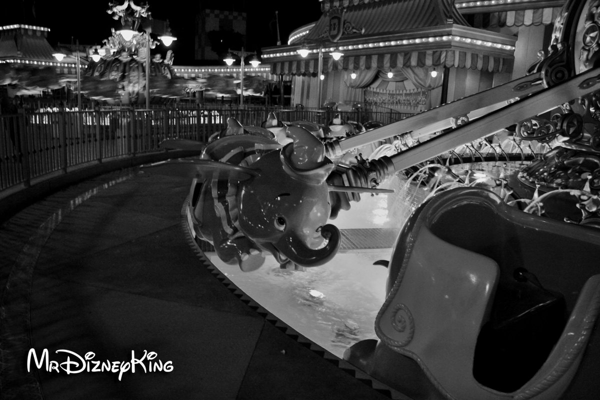 MrDizneyKing&#39;s Best #Disney Photography Series  &quot;Ladies and gentlemen, I give you... #Dumbo!&quot; is what I call this one. #WDW #DisneySide <br>http://pic.twitter.com/Ze2hPpFBdV