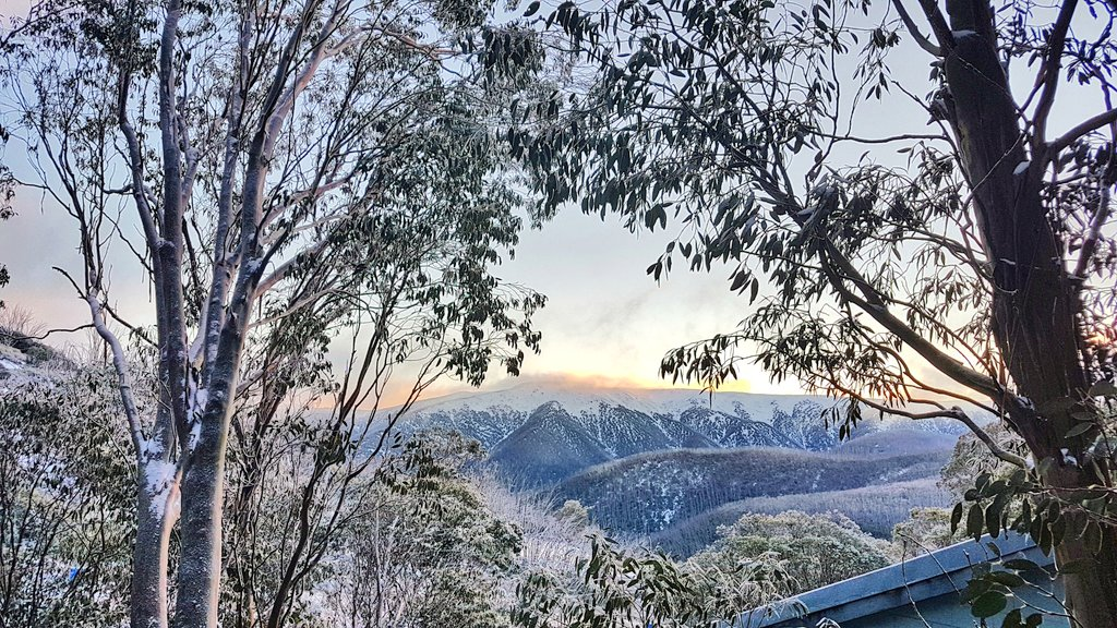 Monday morning views a #FallsCreek. A top up of fresh #snow with more on the way this week. @Melbourne<br>http://pic.twitter.com/cyYz4m9u3O