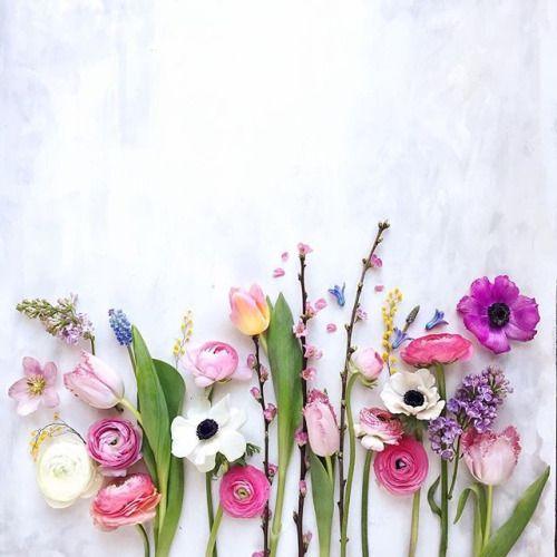 Conoce Felizlunes Conoce El Significado De Las Flores En El Día De