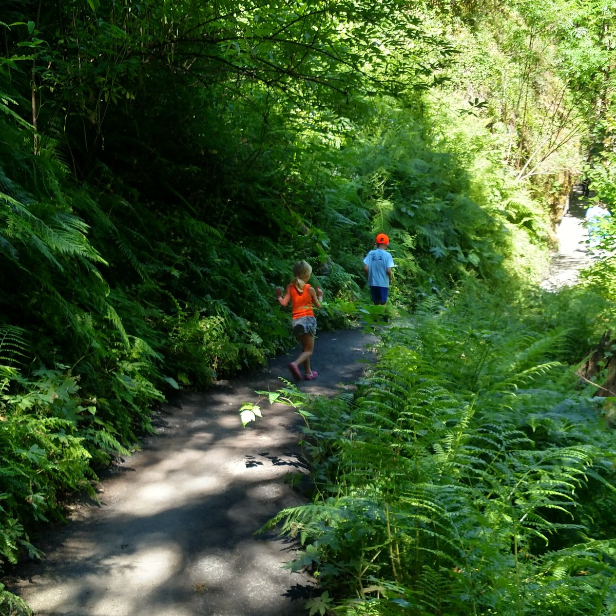 #Hiking with these munchkins outside Portland. #nofilter #pnw #trail #optoutside #neverstopexploring #peoplewhooutdoor #adventurekids<br>http://pic.twitter.com/6Vfabqtomh