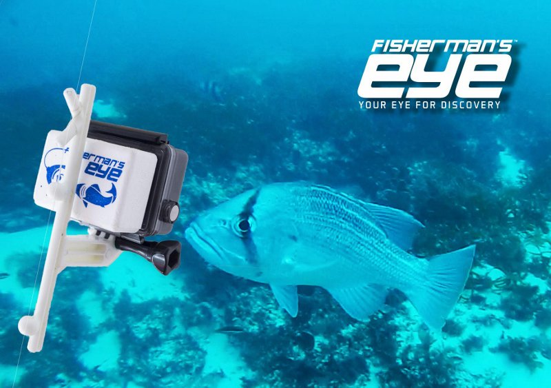 Fishermans Eye Fishing Line Camera Mount Compatible With GoPro Cameras See Whats Under Your Boat In Minutespictwitter Vo2nydnqI3