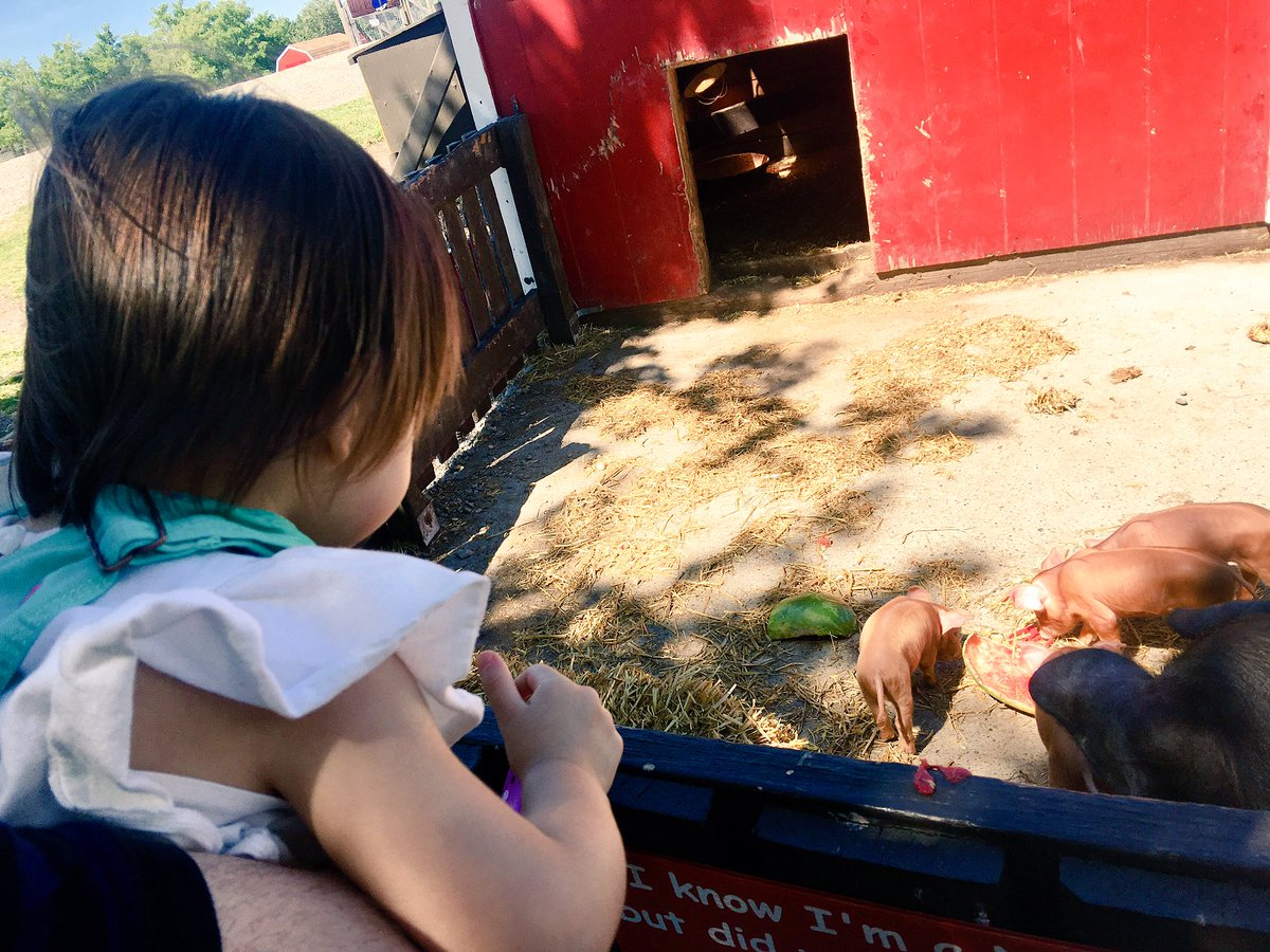 Had a great #familytime @ButterfieldAcrs #toddler #SundayFunday https:...