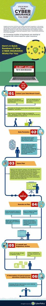 How #Cyberinsurance helps with #databreach management #insurtech #fintech #defstar5 #makeyourownlane #Mpgvip  http:// socialbarrel.com/how-cyber-insu rance-helps-you-deal-with-a-data-breach-infographic/111463/ &nbsp; … <br>http://pic.twitter.com/rvO0sMjScD