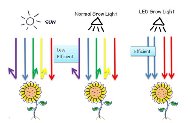 The difference between #LED growlights and other #growlights:   &gt;  http:// bit.ly/2r5FdzV  &nbsp;  <br>http://pic.twitter.com/BdNqOFfk5z
