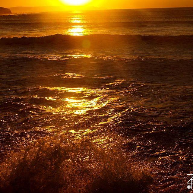 Ocean. Beach. Read. #sunset #beachlife #book #Readers #romance #gamedev #fantasy #historical #Romantic #love #weekendread #reading #Ocean<br>http://pic.twitter.com/TYJeSDrLm4