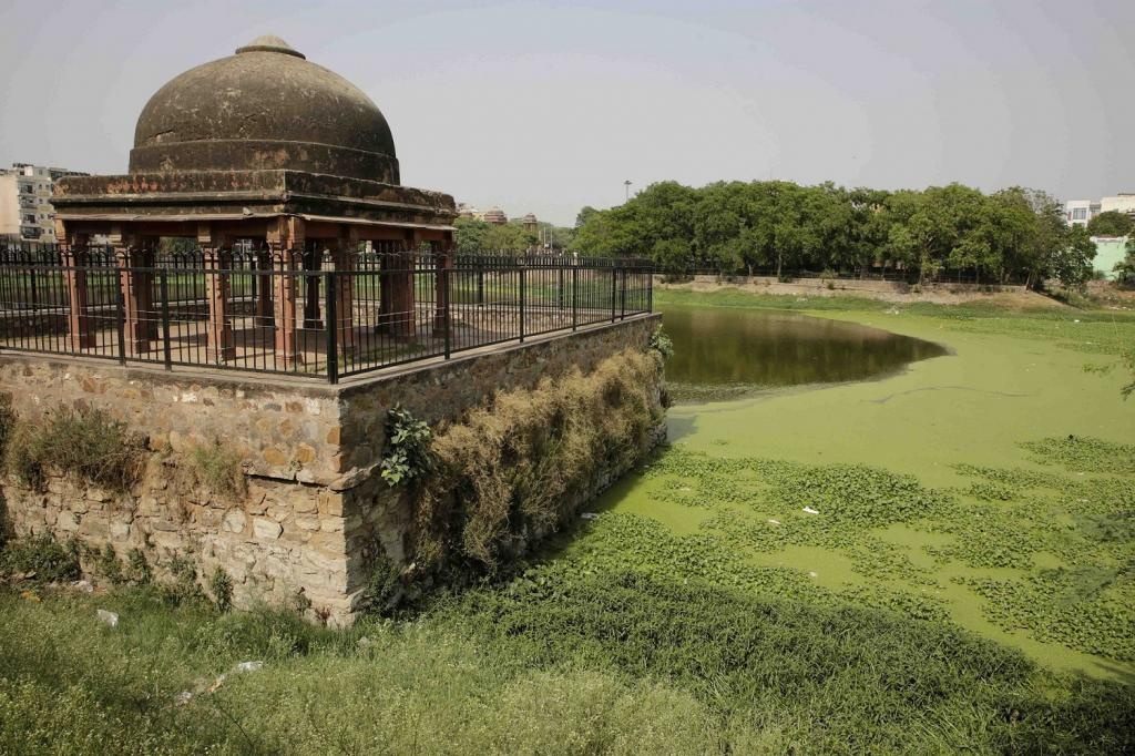 13th-century #water body in #Delhi dying for lack of attention, sustained revival plan  https:// goo.gl/mxLB54  &nbsp;  <br>http://pic.twitter.com/FObj2vFrZQ